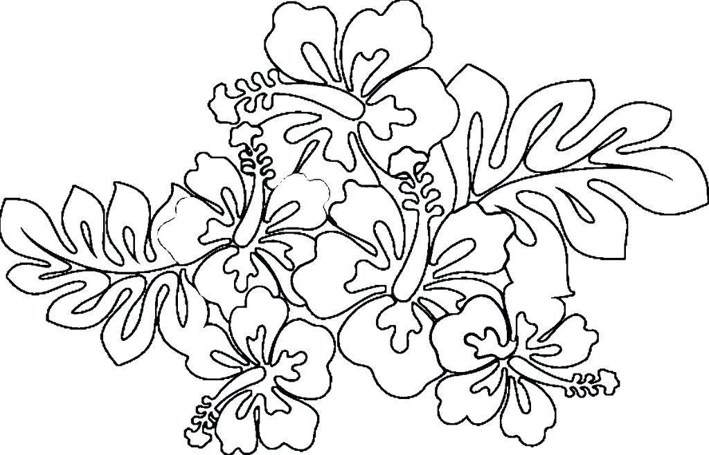 1024x658 Hawaiian Coloring Pages Coloring Pages Hawaiian Flower Coloring