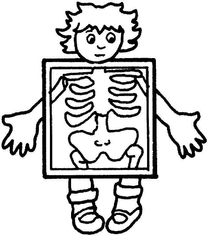 679x772 Coloring Pages Human Body
