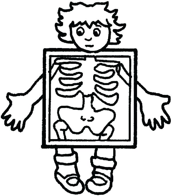 600x682 Body Coloring Pages Human Body Coloring Page Human Body Coloring