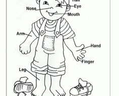 236x189 Convenient Free Coloring Pages Of My Body Part Preschool Body