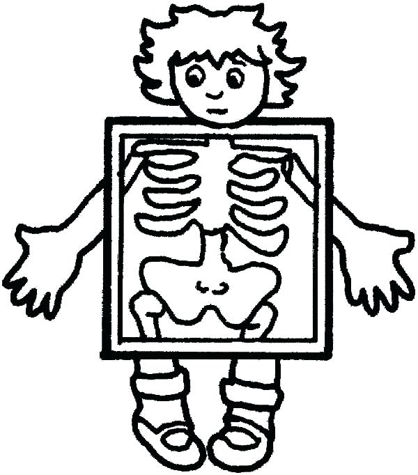 600x682 Coloring Human Body Coloring Pages Skeleton Page Free Printable