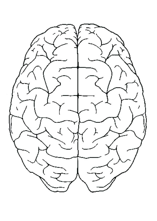 600x848 Brain Anatomy Coloring Pages Brain Coloring Book Together