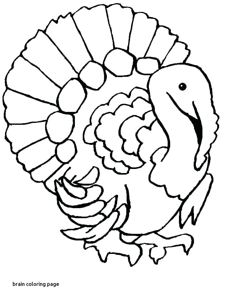 718x957 Coloring Page Of The Brain Brain Coloring Page Brain Coloring