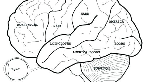 500x280 Anatomy Coloring Pages Muscles Free Anatomy Coloring Pages Anatomy