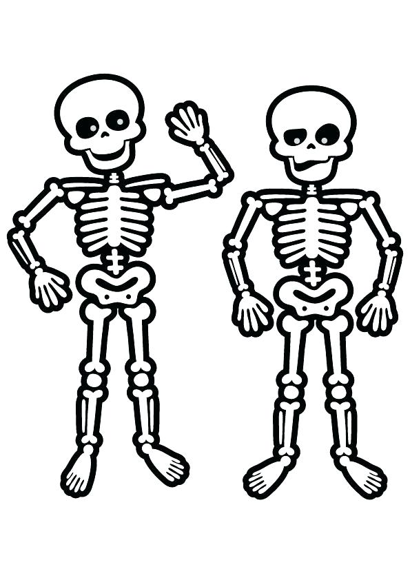 595x842 Human Skeleton Coloring Pages Human Skeleton Coloring Pages Human
