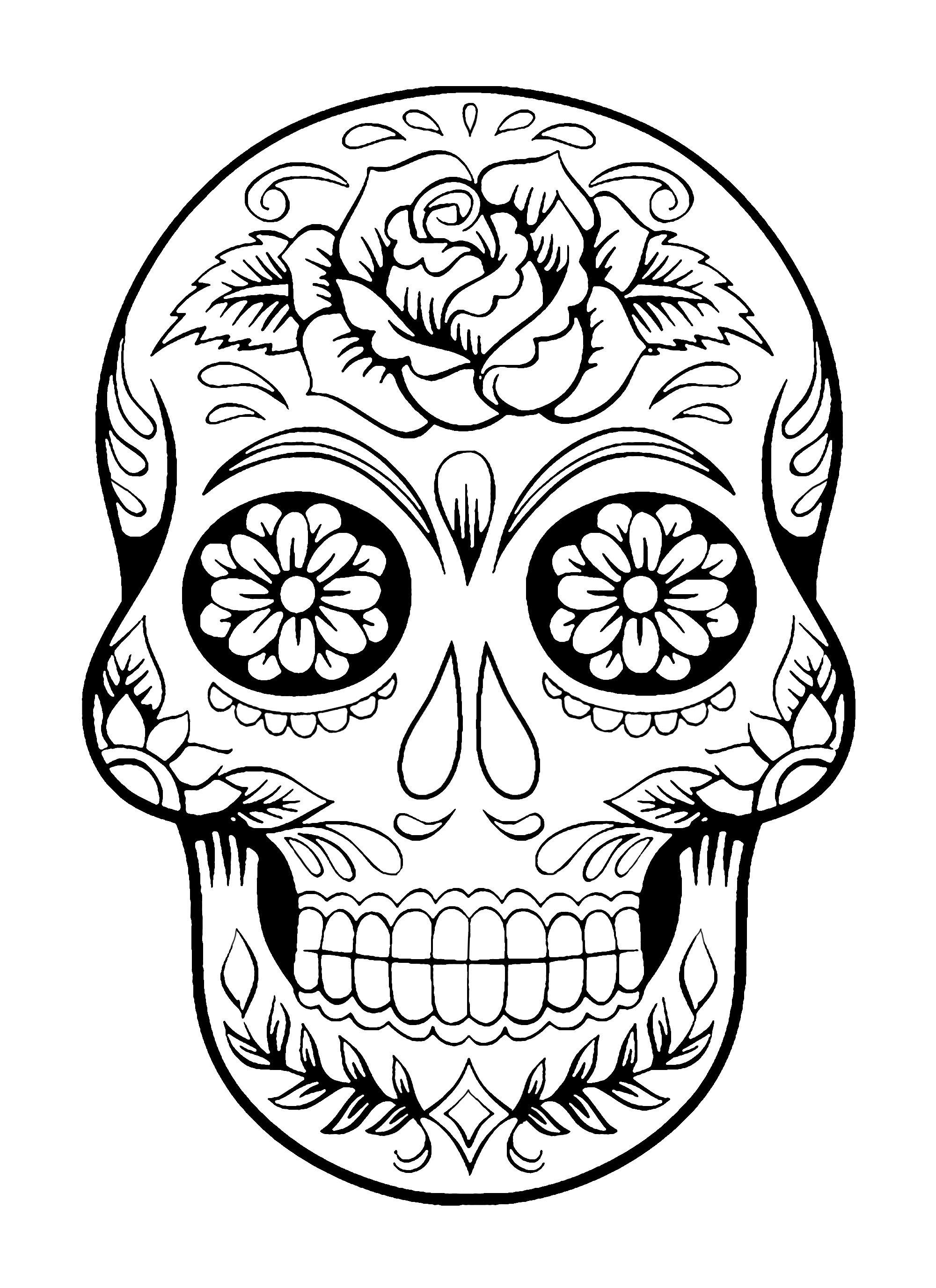 2000x2753 Skull