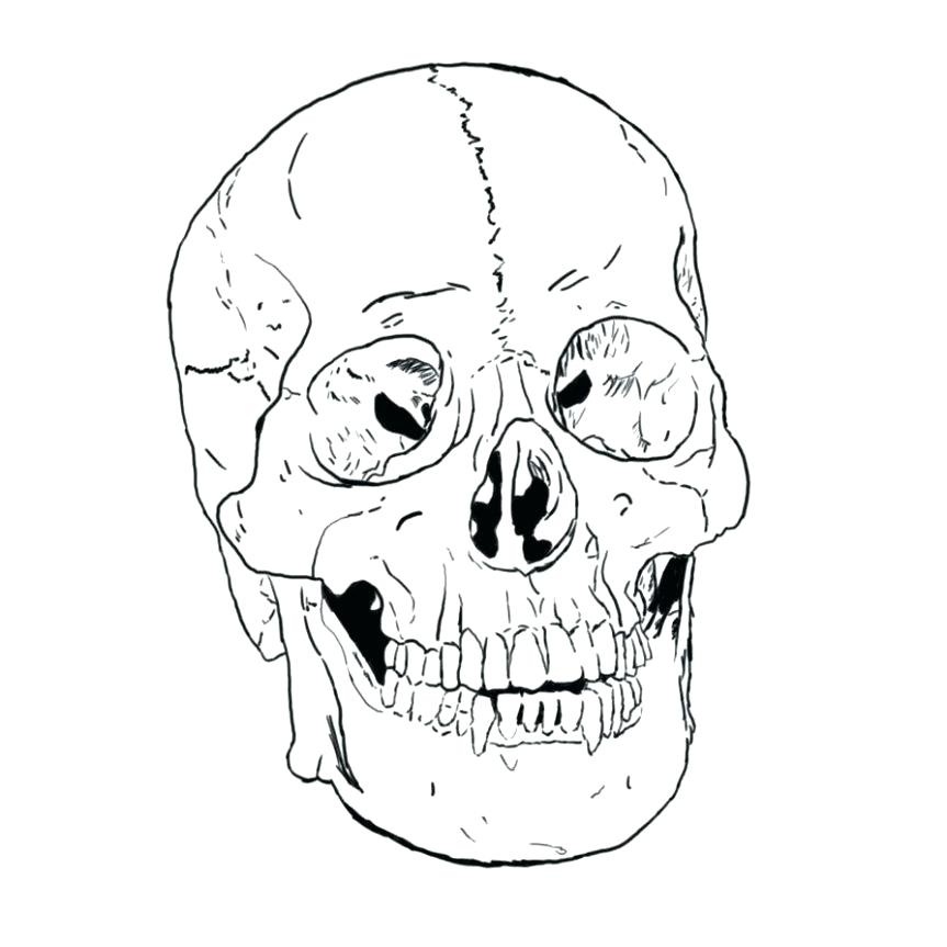 863x863 Skull Coloring Pages Anatomy Skull Coloring Pages Anatomy Coolest