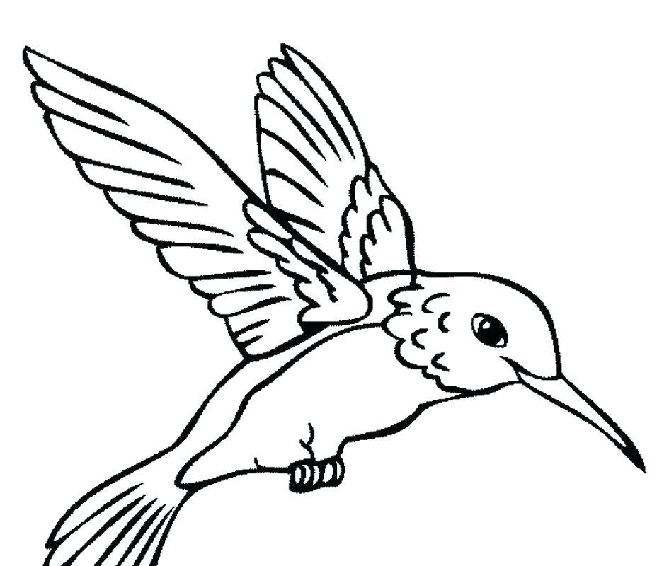 945x800 Hummingbird Coloring Pages Beautiful Page Printable For Kids Free