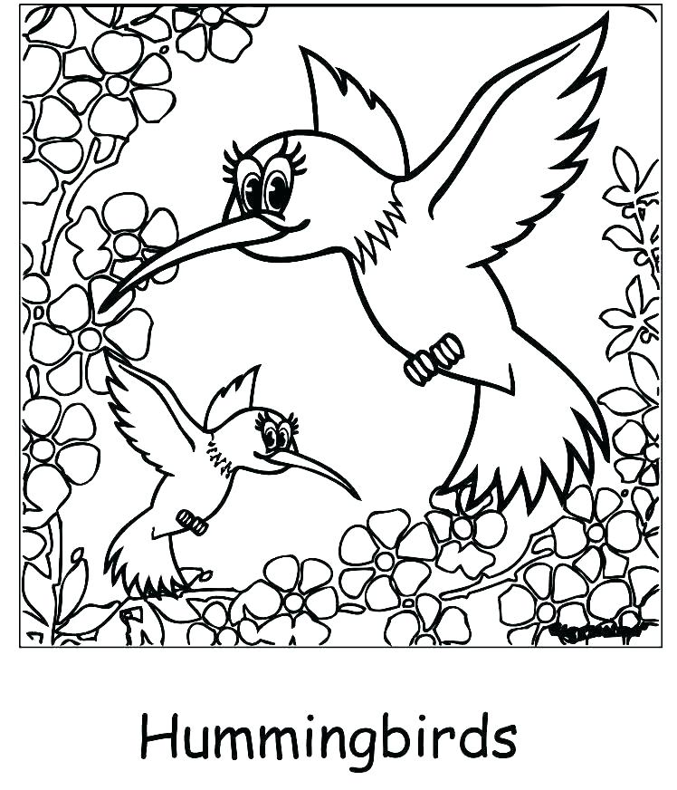 The best free Hummingbird coloring page images. Download from 288 ...