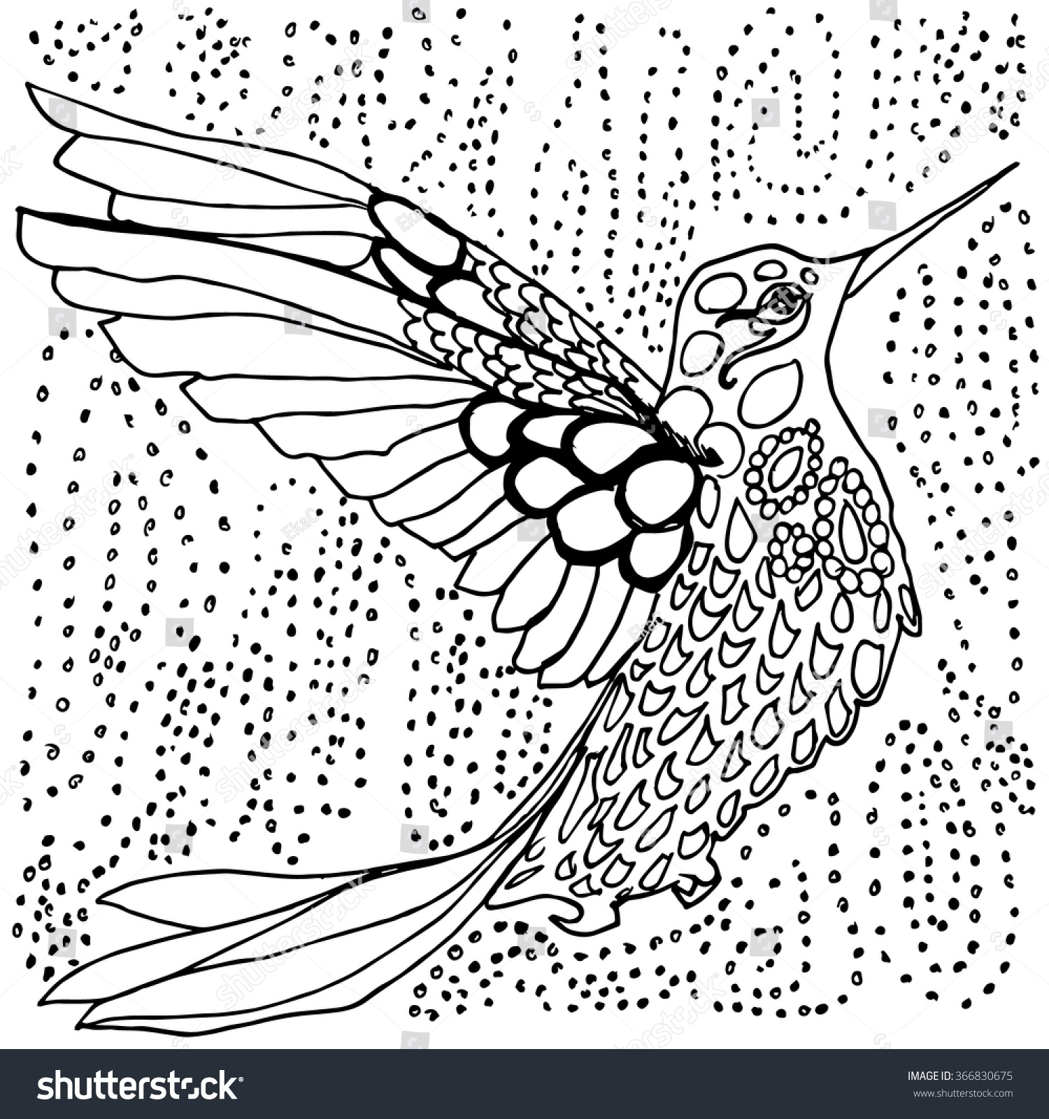1500x1600 Hummingbird Coloring Pages For Adults Collection