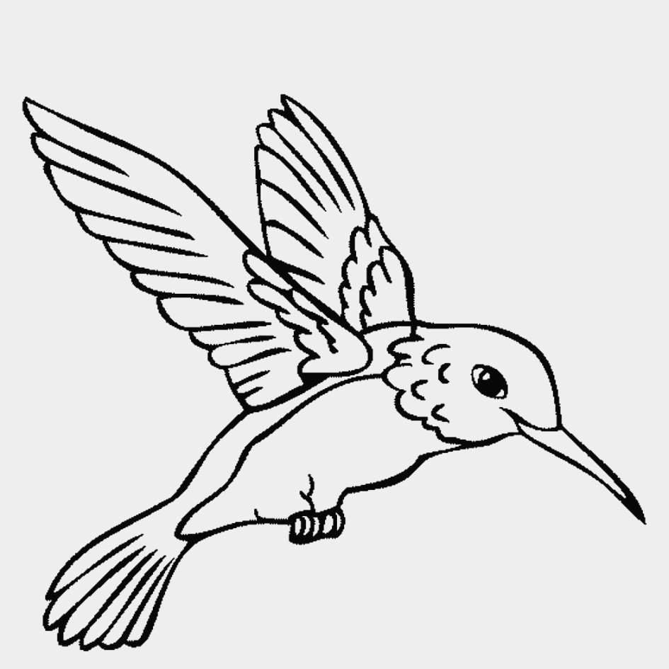 945x945 Two Hummingbirds Drinks Flower Nectar Coloring Page Beautiful