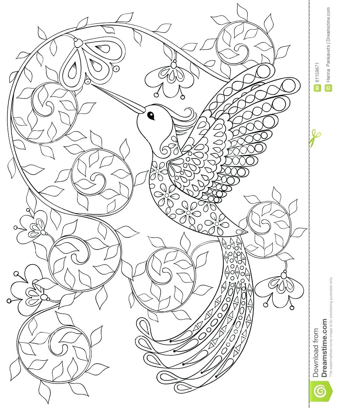 1076x1300 Coloring Pages Hummingbird Coloring Pages Page Of And Hibiscus