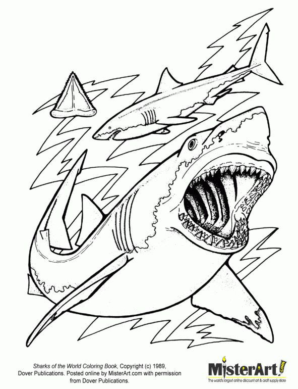 591x770 Hungry Shark Evolution Coloring Pages