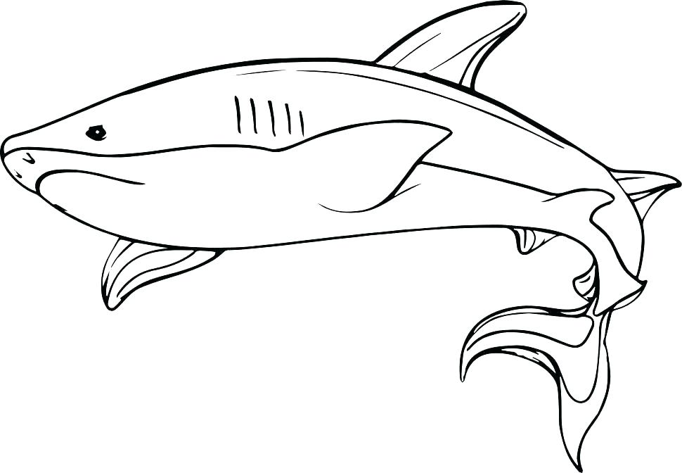 970x672 Shark Coloring Page Free Good Hammerhead On Seasonal Colouring
