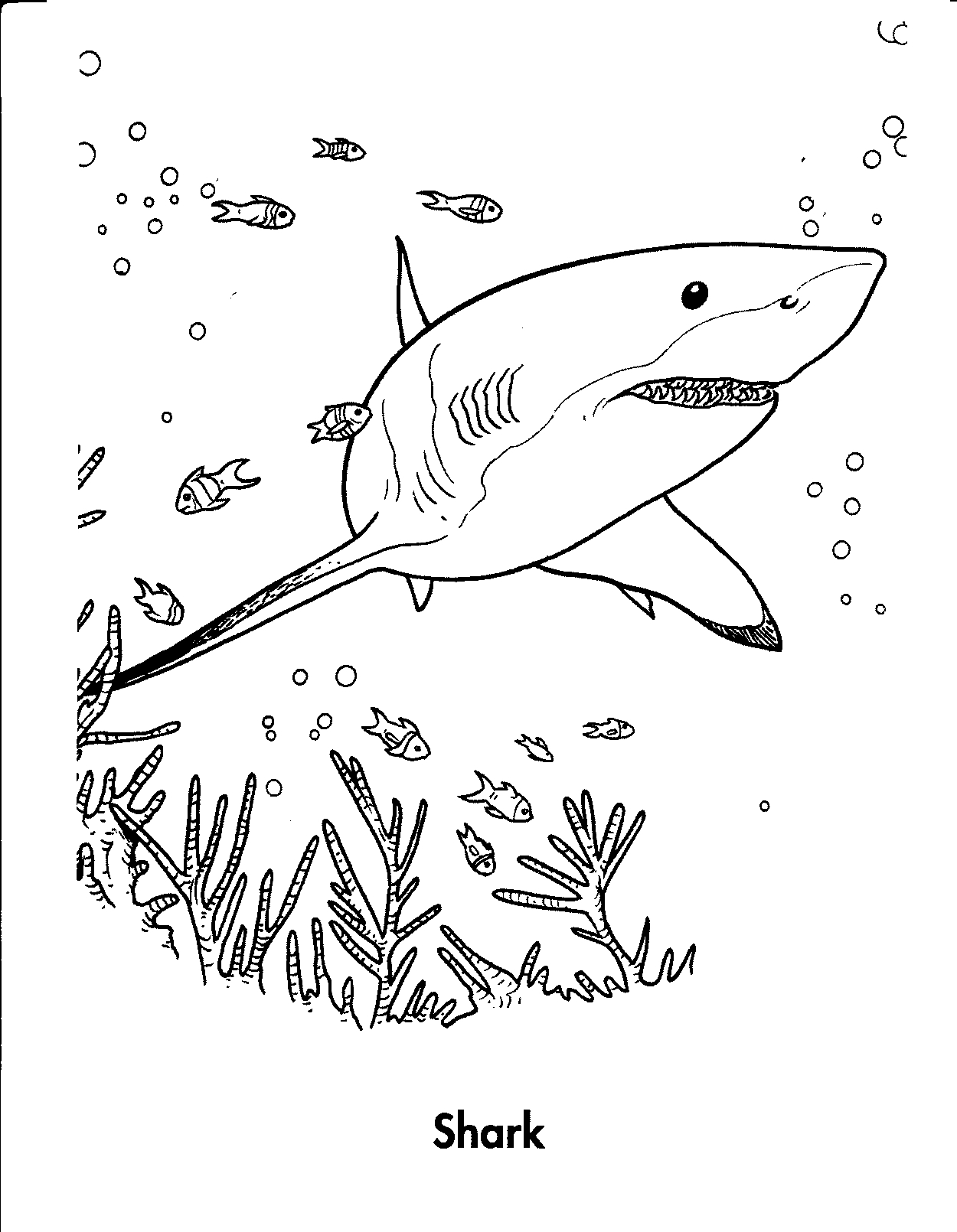 Hungry Shark World Coloring Pages