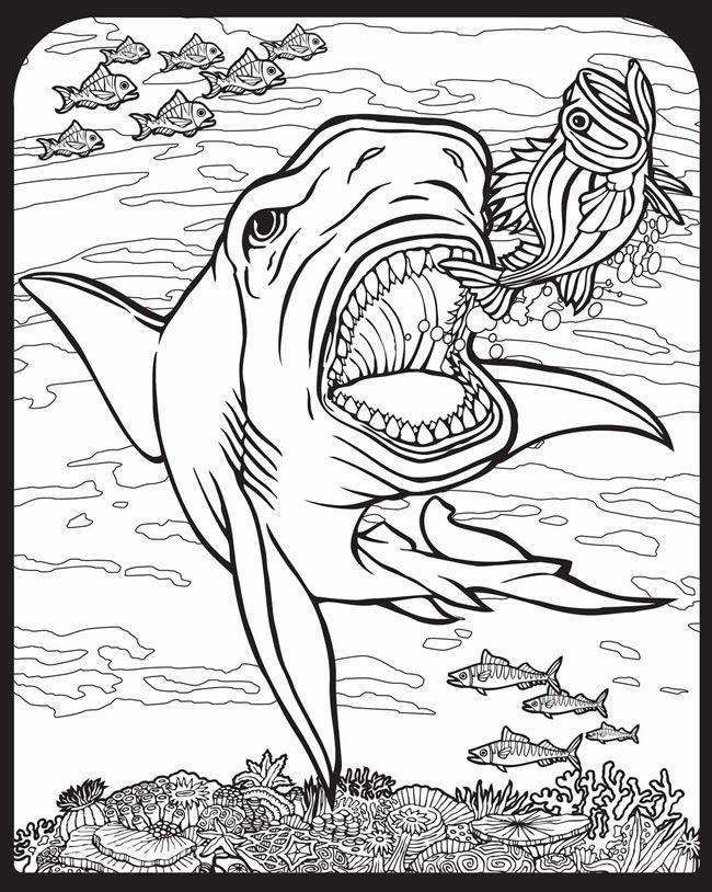 650x814 Willkommen Bei Dover Publications