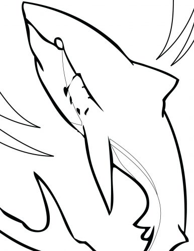 386x500 Coloring Pages Shark Coloring Pages Vector Of A Cartoon Hungry