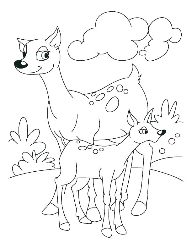 612x792 Deer Hunting Coloring Pages Deer Hunting Coloring Pages Hunting