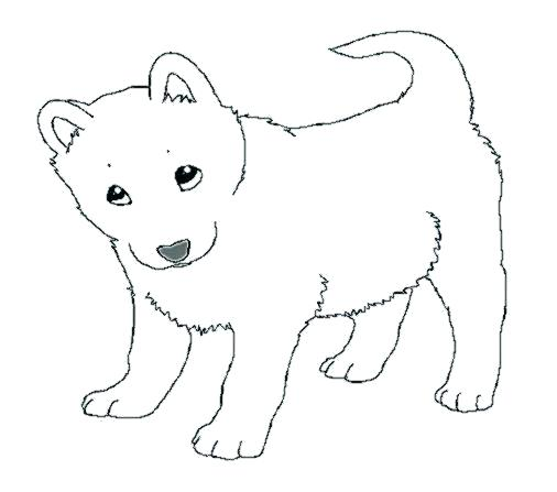 Husky Dog Drawing At Getdrawings Com
