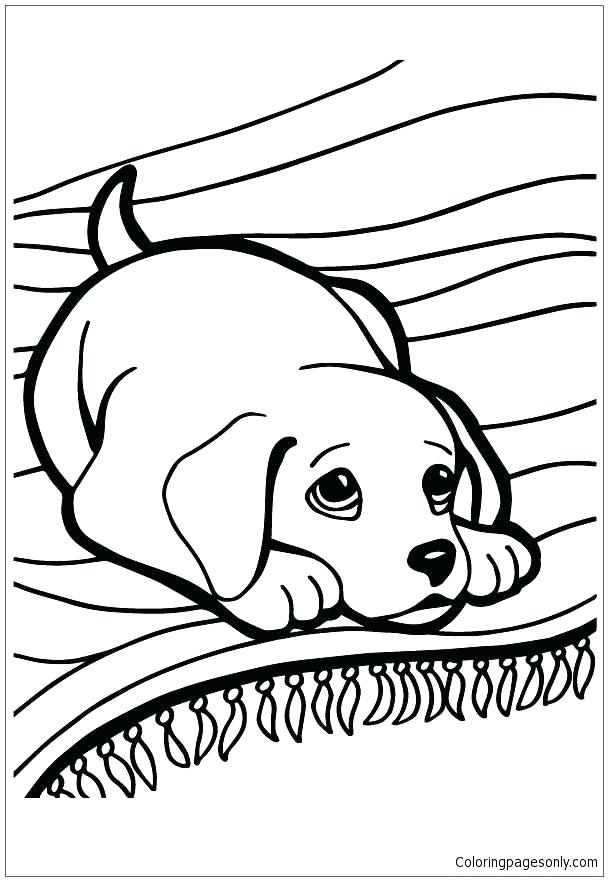 608x881 Husky Coloring Pages Husky Puppies Coloring Pages Husky Coloring