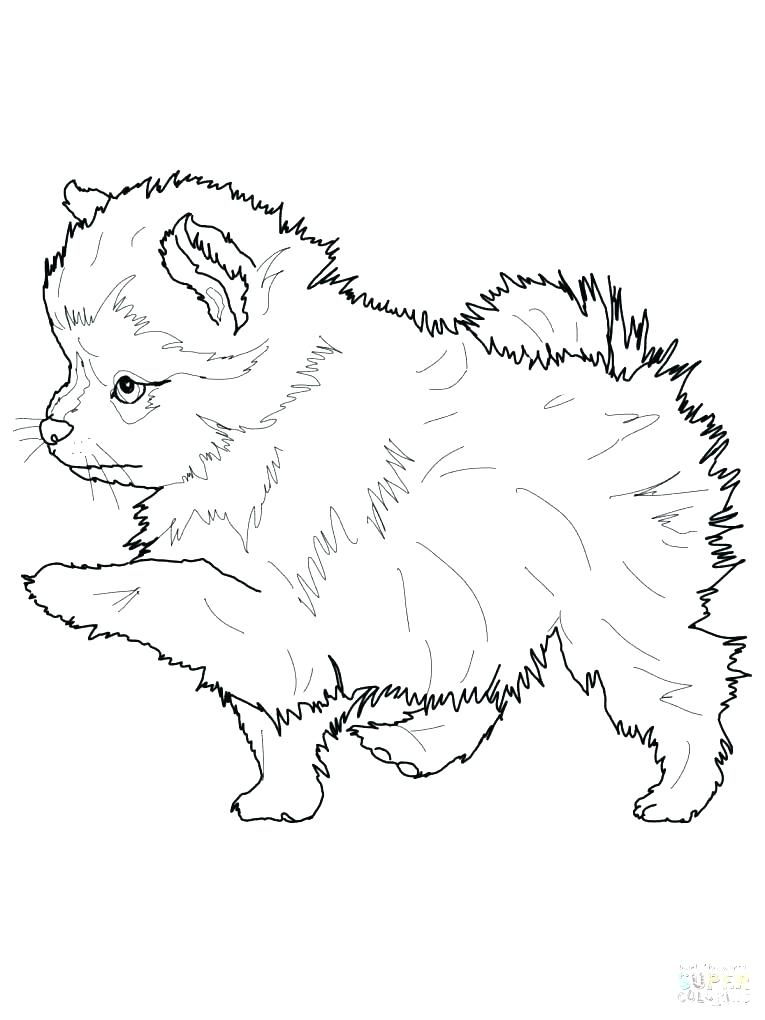 765x1020 Husky Puppy Coloring Pages Puppy Color Page Puppy Coloring Pages