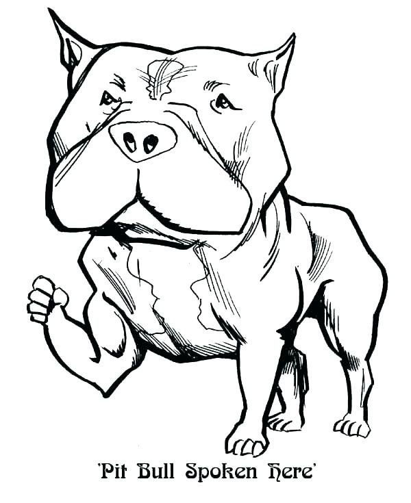 600x735 Husky Coloring Pages Husky Coloring Page Husky Coloring Pages As