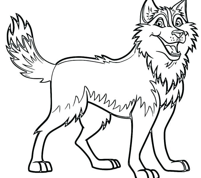 678x600 Husky Coloring Pages Husky Coloring Pages Free Husky Dog Coloring