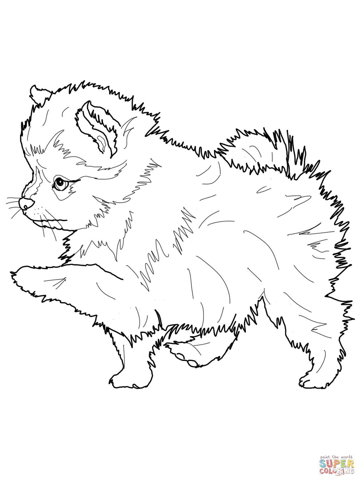 Husky Puppy Coloring Pages at GetDrawings | Free download