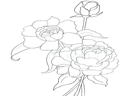 476x333 Howard B Wigglebottom Coloring Sheet Congratulations Coloring