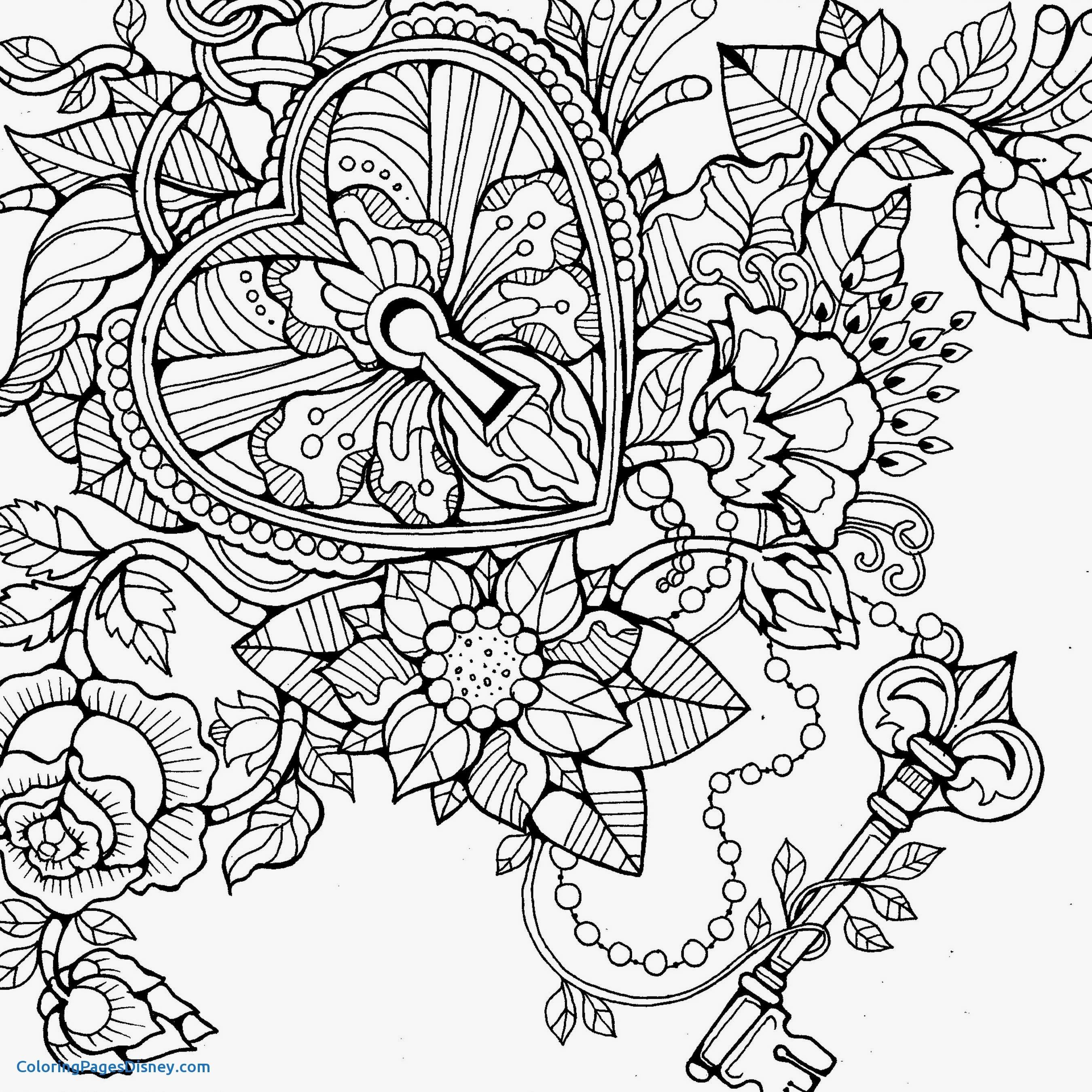 2700x2700 Hydrangea Coloring Pages Unique Colouring Pages