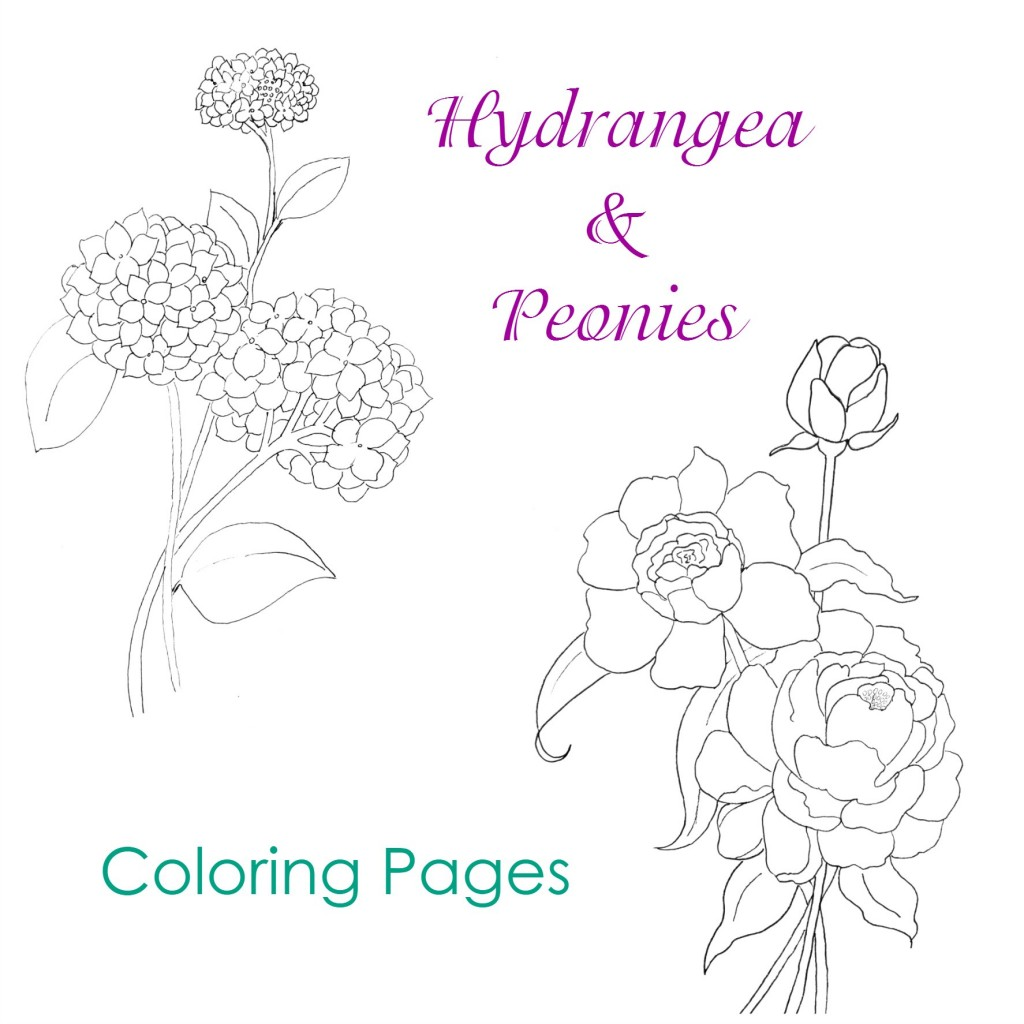 1024x1024 Hydrangea And Peonies Coloring Pages