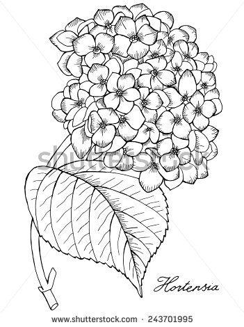 351x470 Hydrangea Glass Art