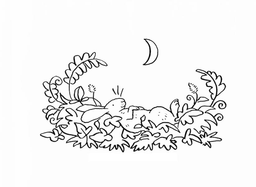823x600 Guess How Much I Love You Coloring Pages