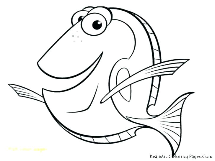 728x546 Fishing Coloring Pages Fish Fishing Coloring Pages To Print