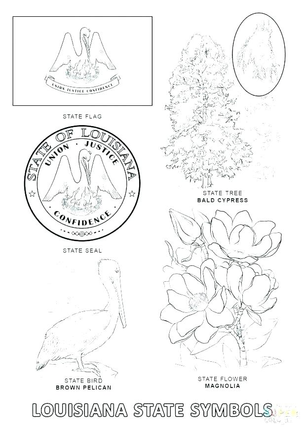 618x872 United States Symbols Coloring Pages Page Idaho State Symbols