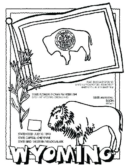 431x560 Illinois State Flag Coloring Page State Coloring Pages For State
