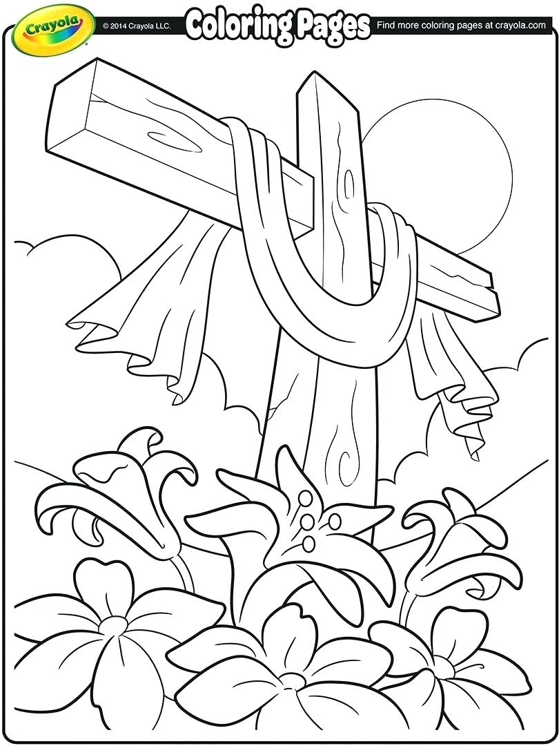 810x1080 Illinois State Flower Coloring Page New Coloring Sheets