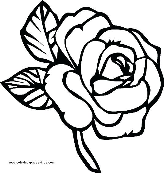 Images Of Coloring Pages Of Flowers at GetDrawings.com ...