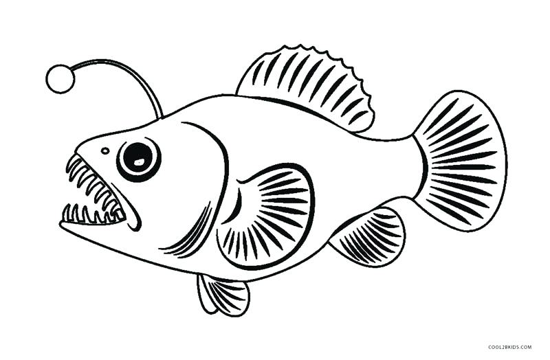 800x524 Angler Fish Coloring Pages
