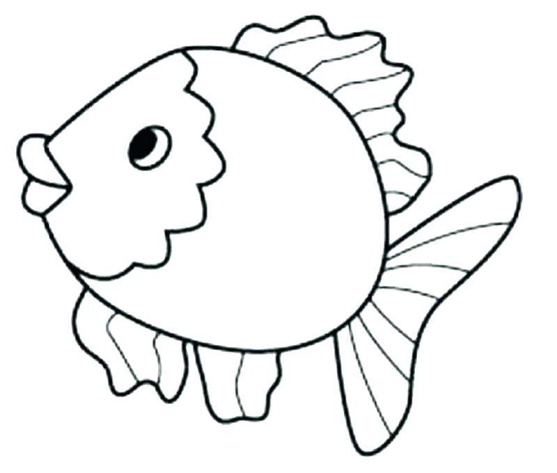 800x680 Plus Drawn Gold Fish Coloring Page Free Printable Tropical Fish