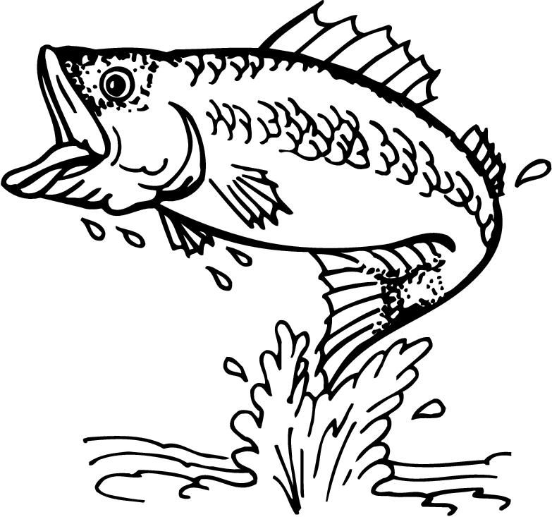 783x733 Jumping Fish Coloring Pages This Is Best Bass Fish Outline
