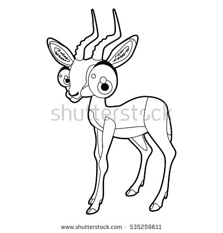 450x470 Impala Animal Coloring Pages Transasia