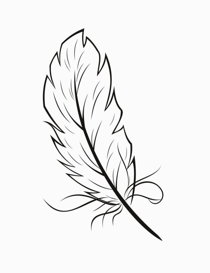 720x937 Feather Coloring Sheet Coloring Pages Feathers