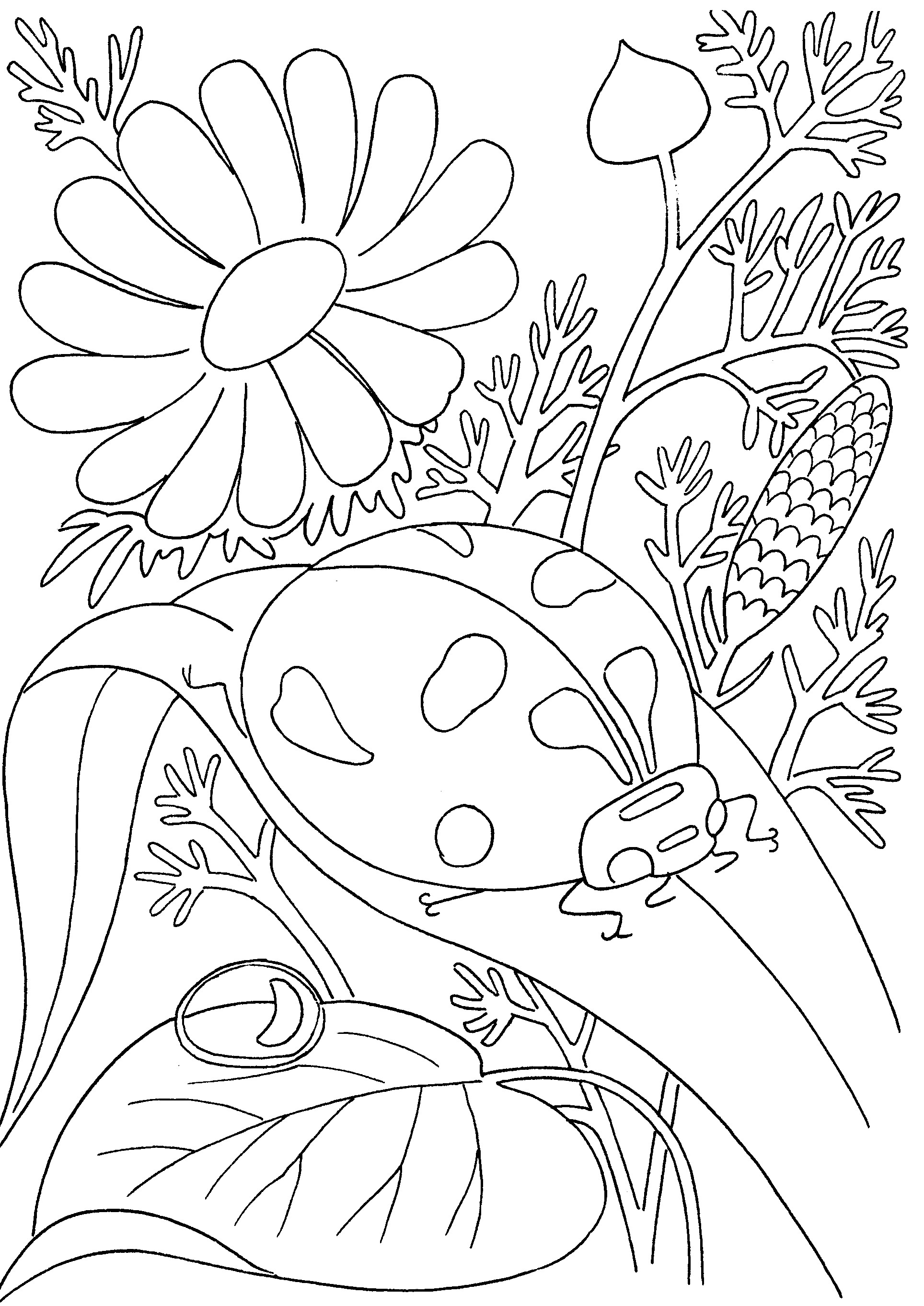 1928x2726 Gardening Coloring Pages For Kindergarten New Garden Coloring