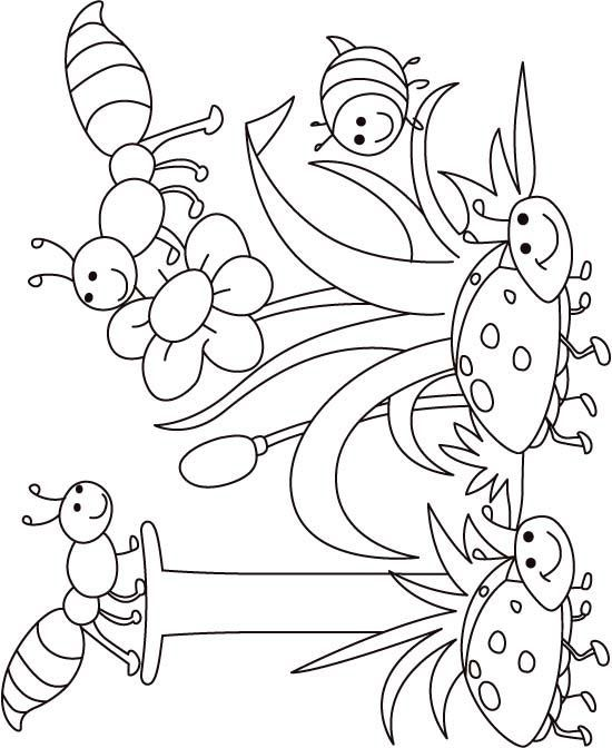 550x672 I For Insect Coloring Page For Kids