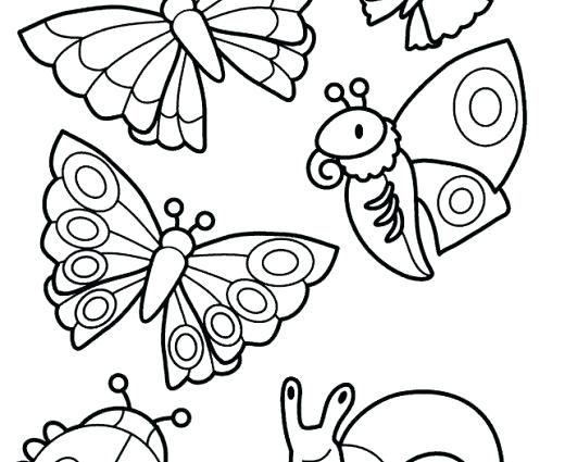 520x425 Insect Coloring Pages Insect Coloring Pages Printable Insects Top