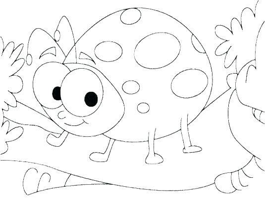 535x415 Insect Coloring Sheets Insect Coloring Pages Cute Ladybug Insect