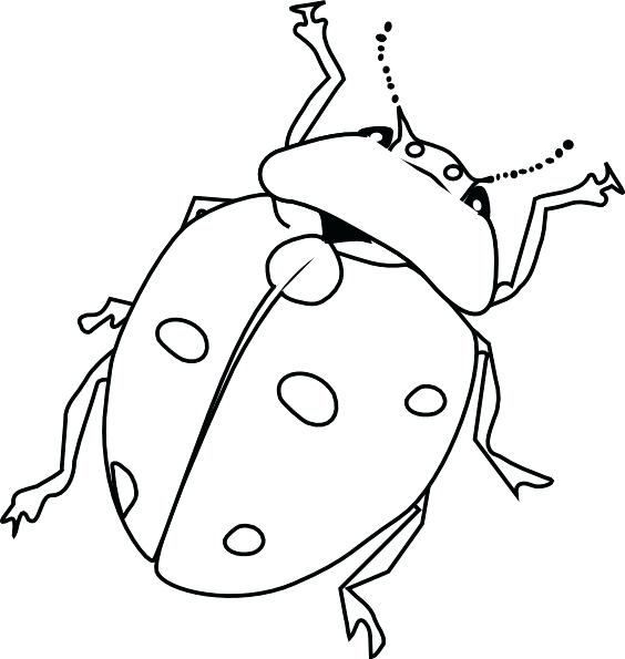 564x595 Awesome Of Printable Bug Coloring Pages Image Coloring Pages