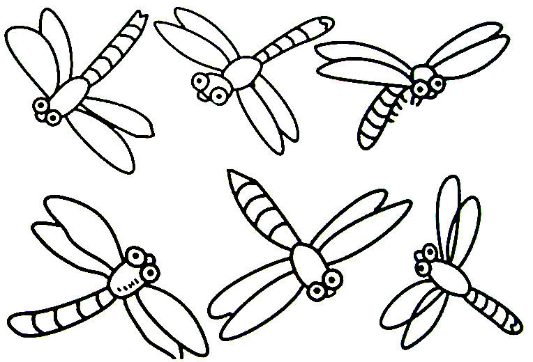 764x520 Practical Printable Pictures Of Insects Sporturka Free