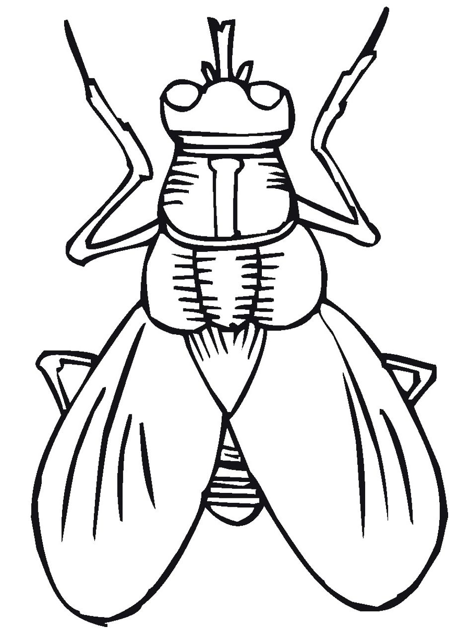 950x1266 Flying Insect Coloring Pages To Print The Stinky Cheese Man